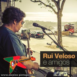 Rui Veloso e Amigos (2012)